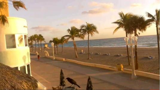 Hollywood Resort Beach Weather Web Cam Broward County Florida
