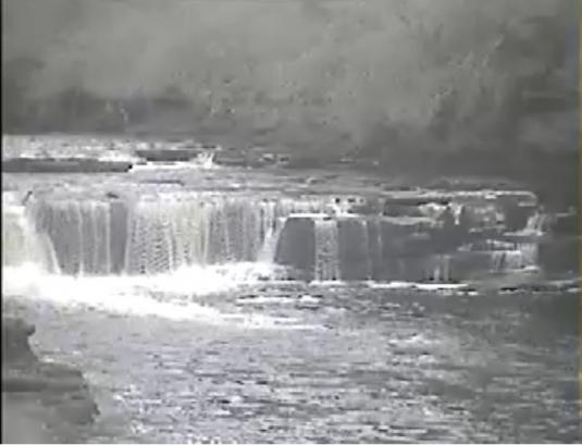 Falls of the Clyde Waterfall Webcam New Lanark South Lanarkshire Scotland